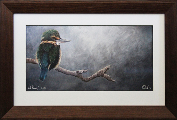 Giclee print framed of a New Zealand kingfisher painting by NZ wildlife artist Karen Neal