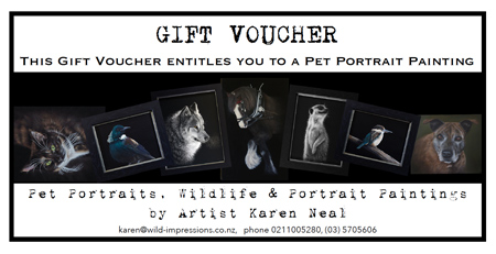 Gift vouchers for commissioned paintings, pet portraits, portraits by NZ Artist Karen Neal