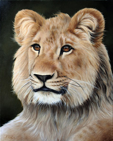 Christian the Lion painting in progress by wildlife artist Karen Neal