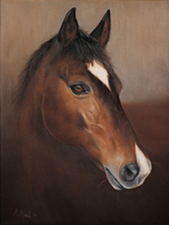 Horse pet portrait painting by Artist Karen Neal